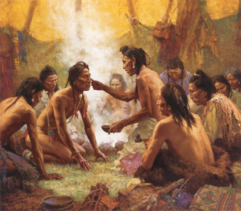 an introduction to the history of the native american indians
