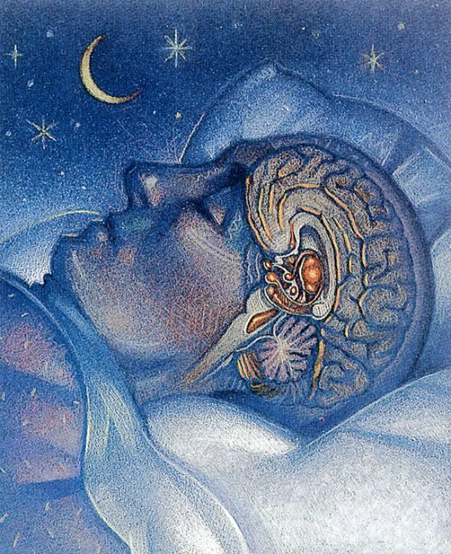 Картинки на тему сны и сновидения