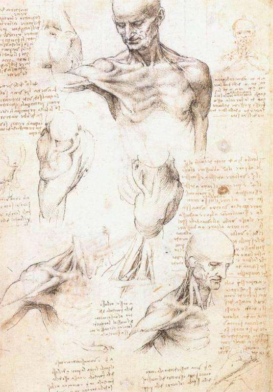 Vinci, Leonardo Da (Леонардо да Винчи).